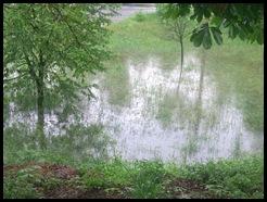 IMG188 Thumb in Hochwasser 2013 - auch unsere Gegend hat es wieder voll erwischt