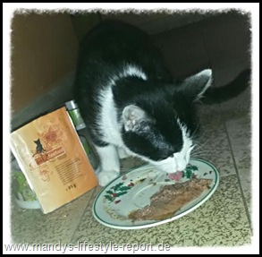 Katz Thumb in Catz finefood - Feinkost für unsere Samtpfoten